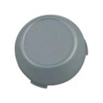Center Hubcap for F150 (gray)