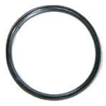 Sealing Gasket for Th. Carafe Lid DCC2400CLG
